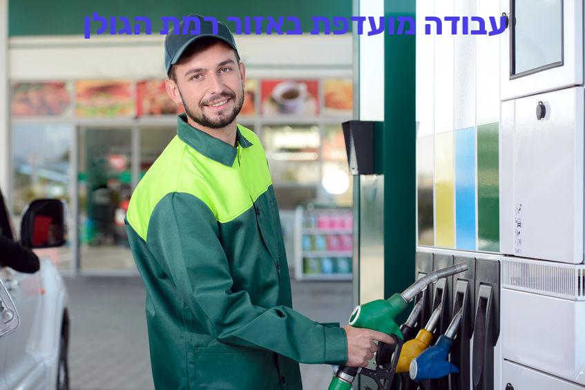 עבודה מועדפת באזור רמת הגולן